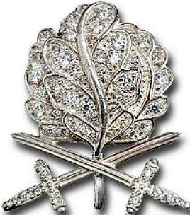 Аверс пристежки Дубовые листьями с Мечами и Бриллиантами.