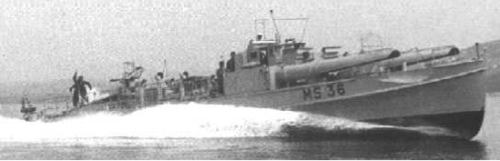 Торпедный катер «MS-36»