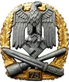 Знак «За участие в общих штурмовых атаках» 75 атак