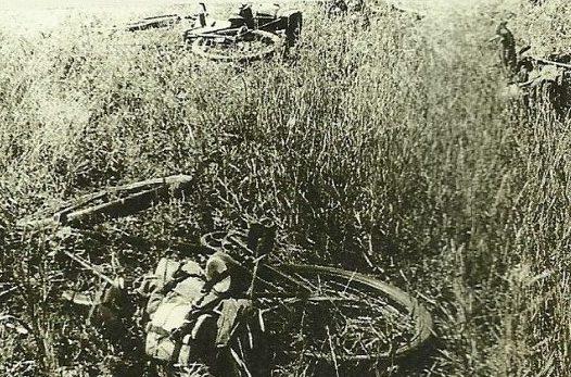 Велосипеды «потерявшие наездников».