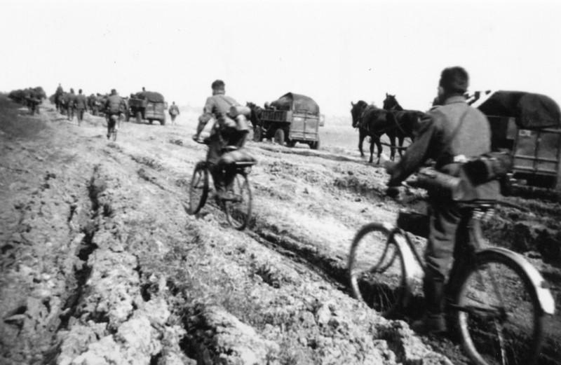 «Велопробег» по бездорожью