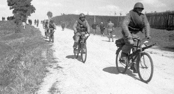 Маневры Войска Польского. Сентябрь. 1938 г.