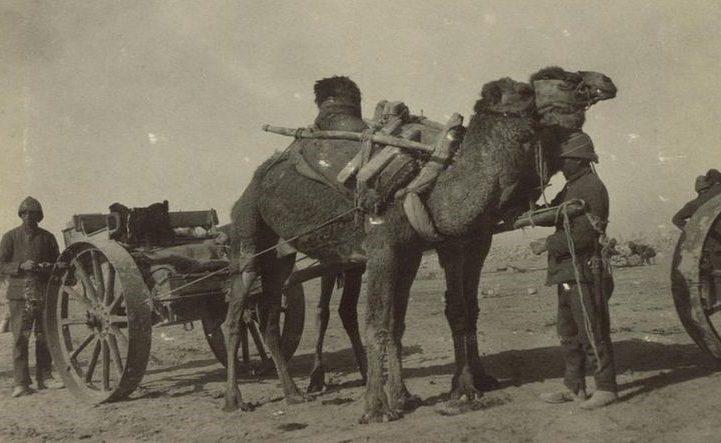 Османская армия. 1915 г.