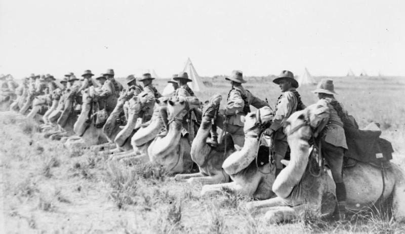 Австралийская верблюжья кавалерия. Палестина, 1918 г.