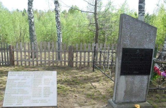 д. Дулебы Березинского р-на. Обелиск на братской могиле