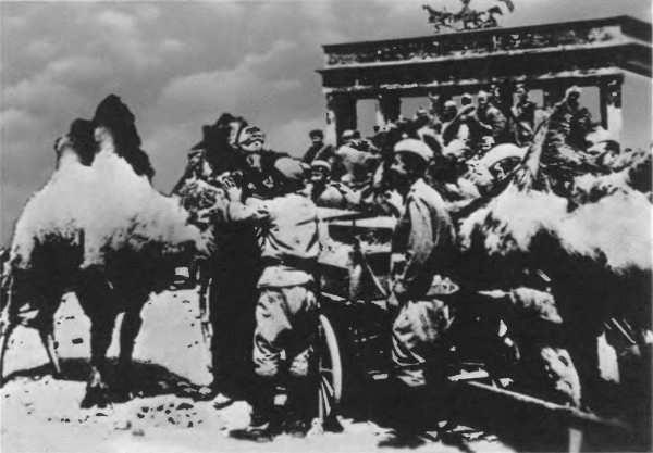 Верблюды в Берлине. Май 1945 г.