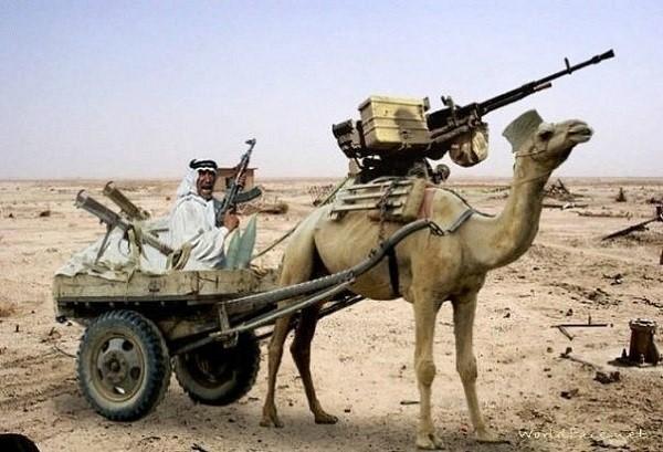 Современная боевая колесница моджахедов