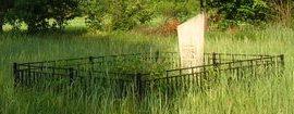 д. Переходы Слуцкого р-на. Вдоль бывшей деревенской улицы, стоят металлические оградки там, где когда-то стояли дома