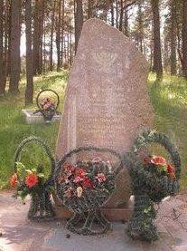 д. Новый Свержень Столбцовского р-на. Братская могила