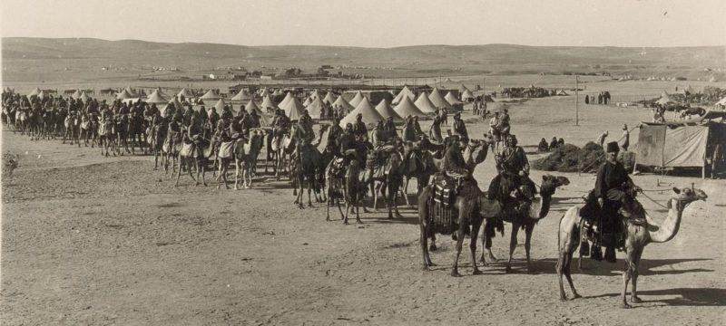 Верблюжий корпус. Беэр-Шева, 1916 г.