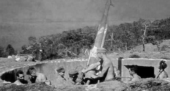 Береговой вариант орудия «130/55-мм» образца 1913 г.