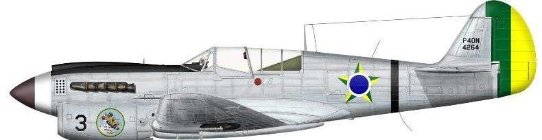 Bradic Srecko. Истребитель Curtiss P-40N.