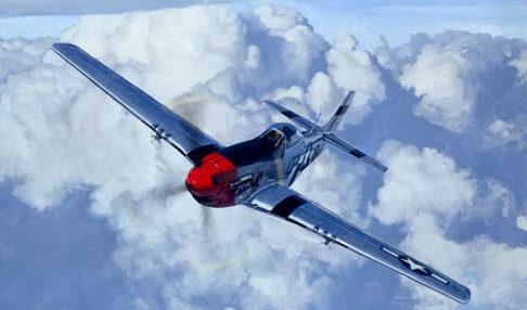 Hamilton Alex. Истребители Р-51.