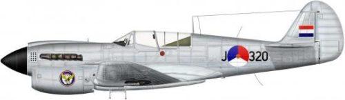 Bradic Srecko. Истребитель Р-40 N.