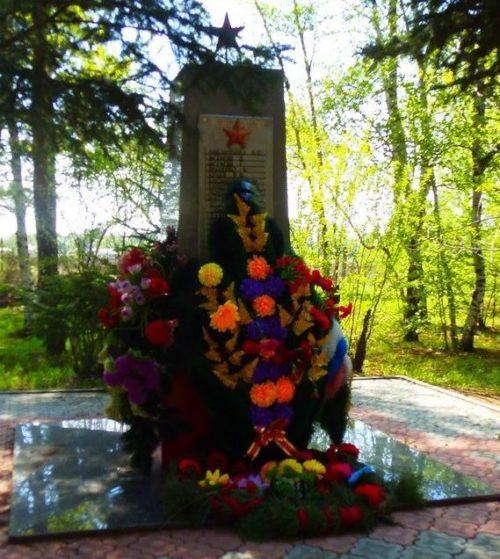 с. Усть-Ивановка Благовещенского р-на. Общий вид памятник погибшим в войне