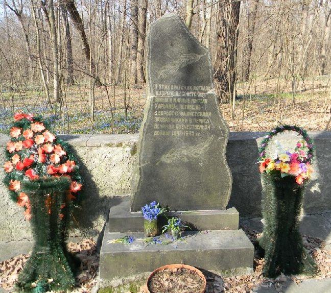 Братская могила воинов и мирных жителей в Лесопарке города