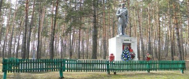 с. Залиман Балаклейского р-на. Общий вид братской могилы