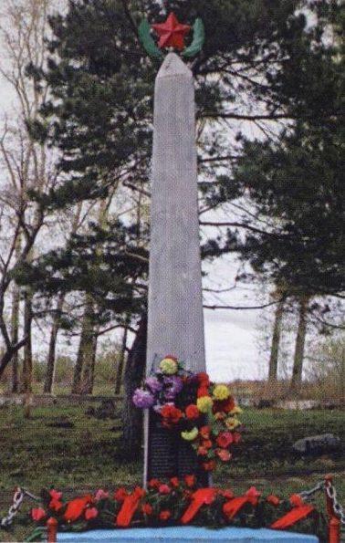 с. Констаноградовка Ивановского р-на. Обелиск защитникам Отечества