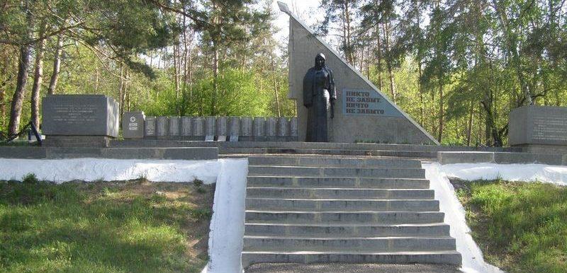 г. Барвенково.Общий вид Мемориала Славы «Скорбящая мать»