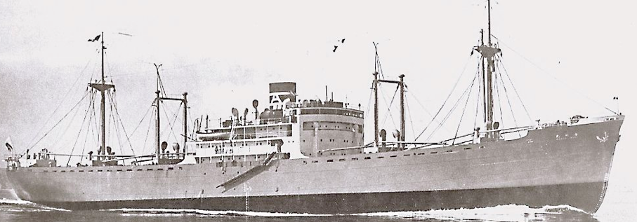 Вспомогательный крейсер «Kongo Maru»