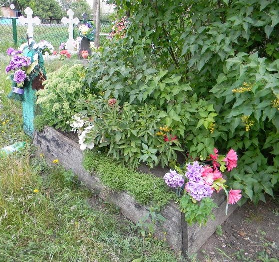 с. Першотравневое Зачепиловского р-на. Братская могила воинов на сельском кладбище