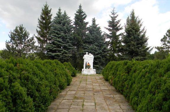 с. Серпневое Валковского р-на центр села. Общий вид братской могилы