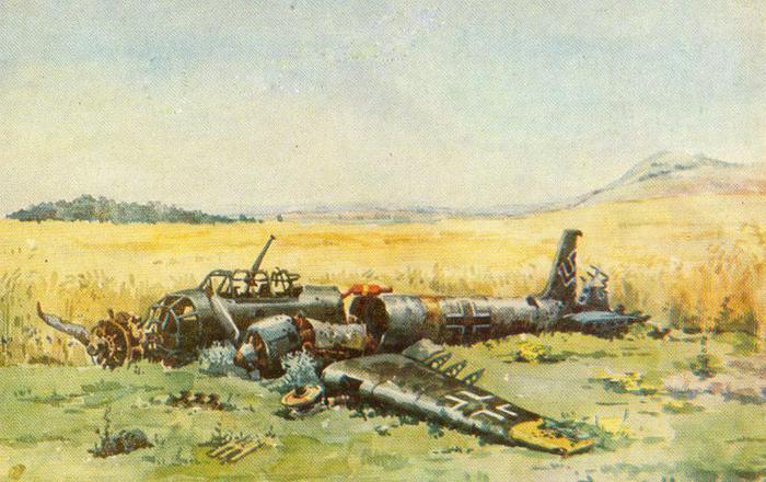 Малаков Георгий. Сбитый бомбардировщик Ю-88.