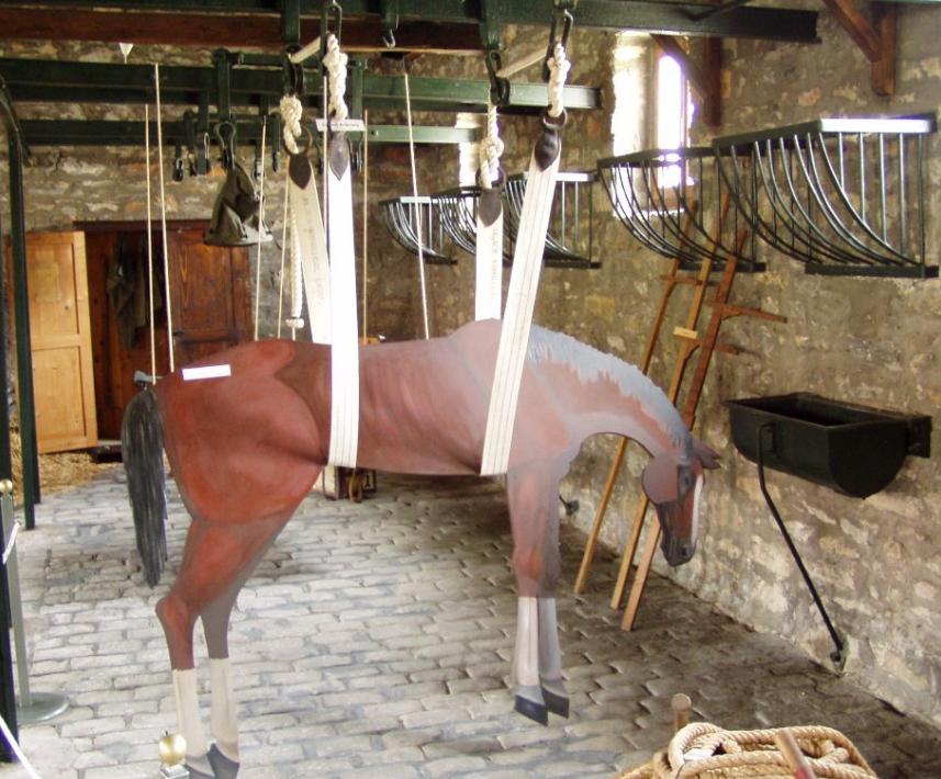 Лошадь в «гамаке».
