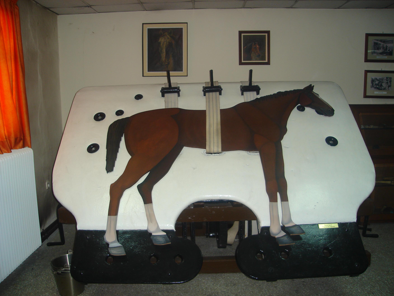 «Лошадиный госпиталь».