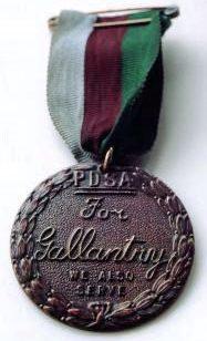 Медаль Марии Дикин