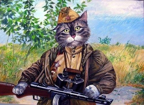 Символический портрет кота-«воина»