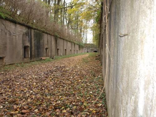 Защитный ров вокруг форта.