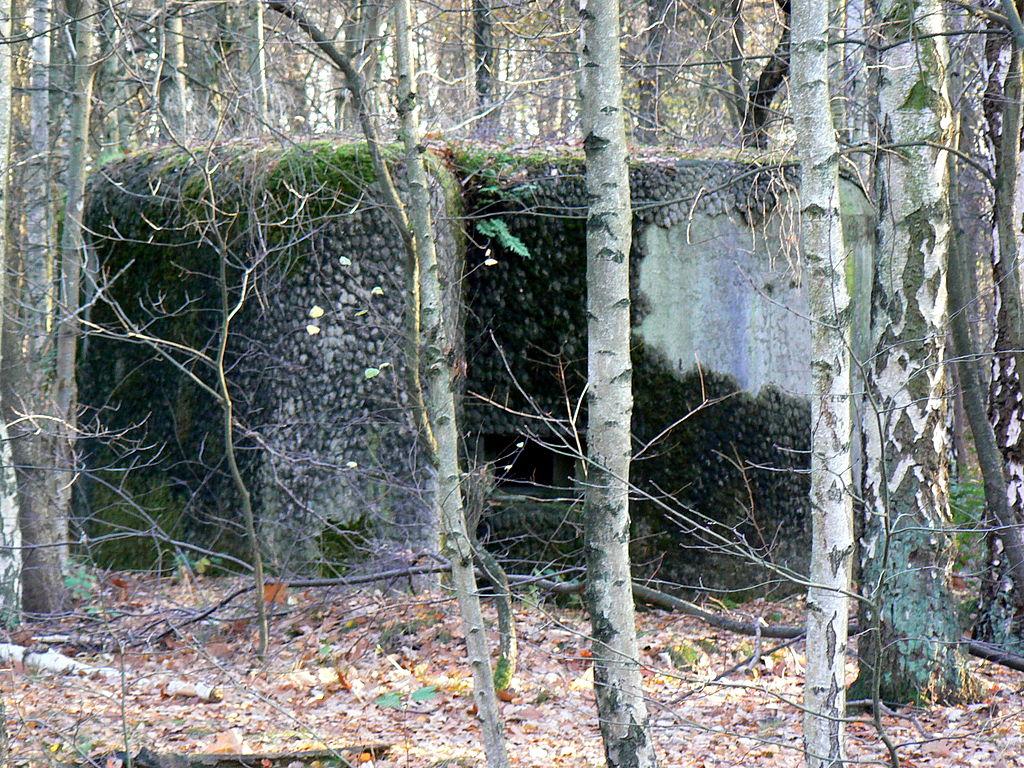 Бункер на берегу канала.