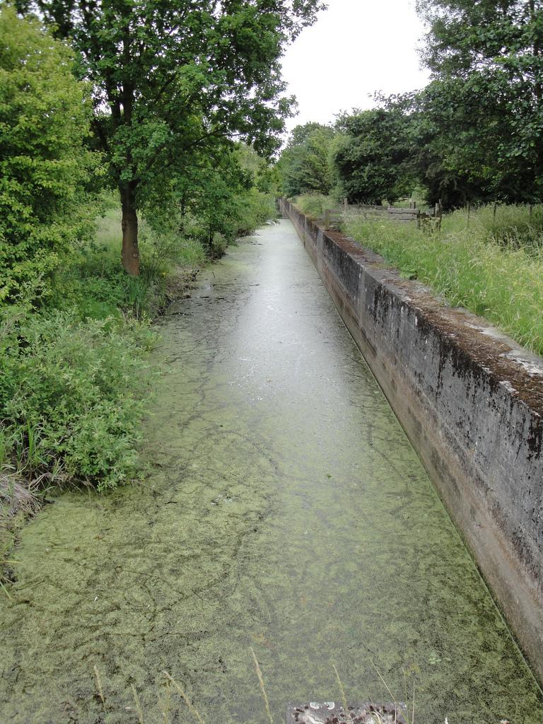 Вид противотанкового рва с водой сегодня.