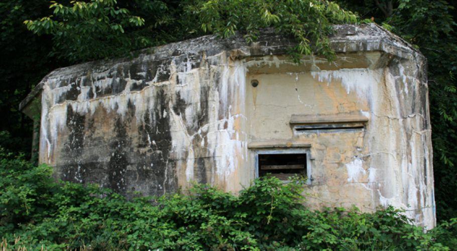 Пулеметные бункеры (ДОТы) КВ-линии.