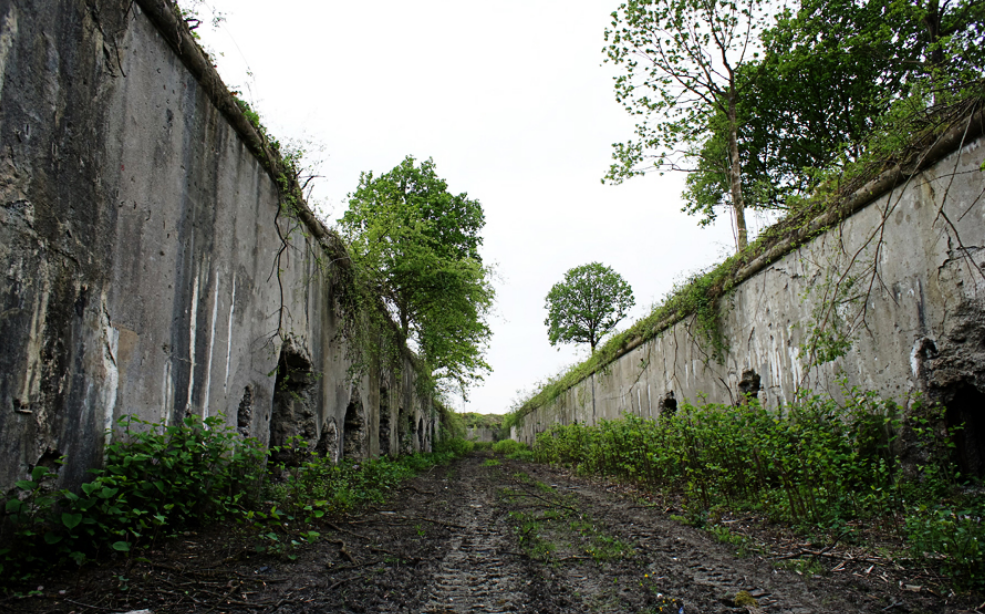Остатки рва вокруг крепости.