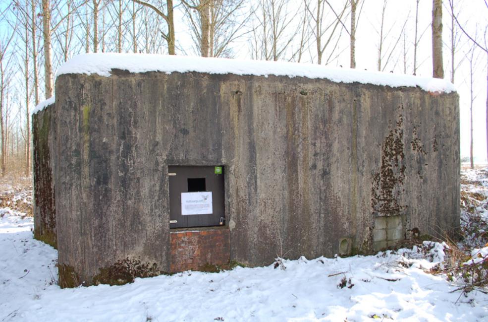 Бункеры оборонительной линии Диль сегодня.