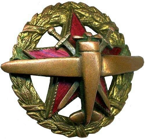 Знак «11-я школа военных пилотов»