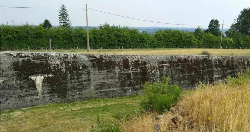 Ров вокруг форта.
