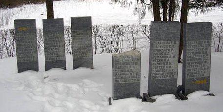 м. Ныо, Ныоская волость. Братские могилы советских воинов, погибших в годы войны