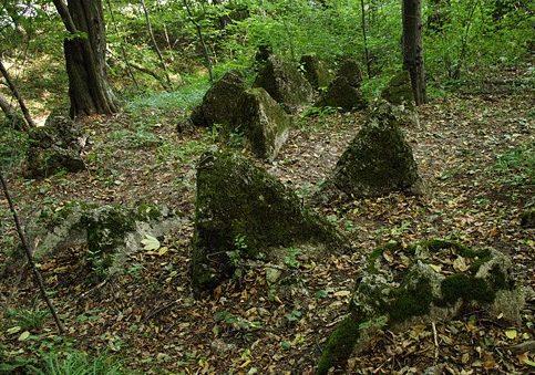 Противотанковые надолбы в лесу
