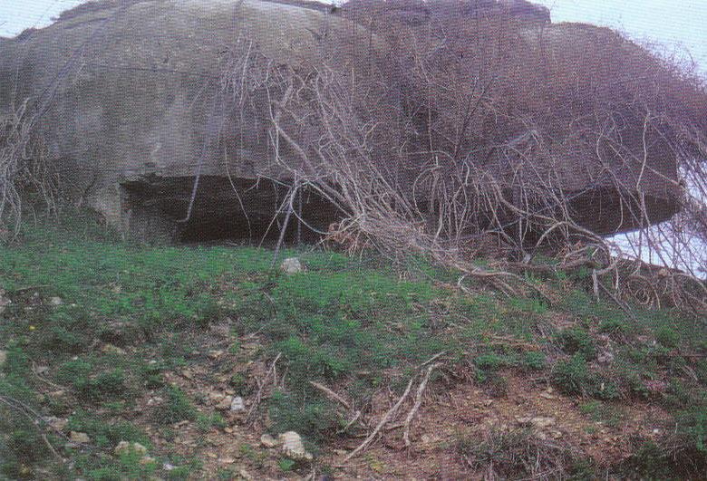 Купола бункера с пулеметными амбразурами.
