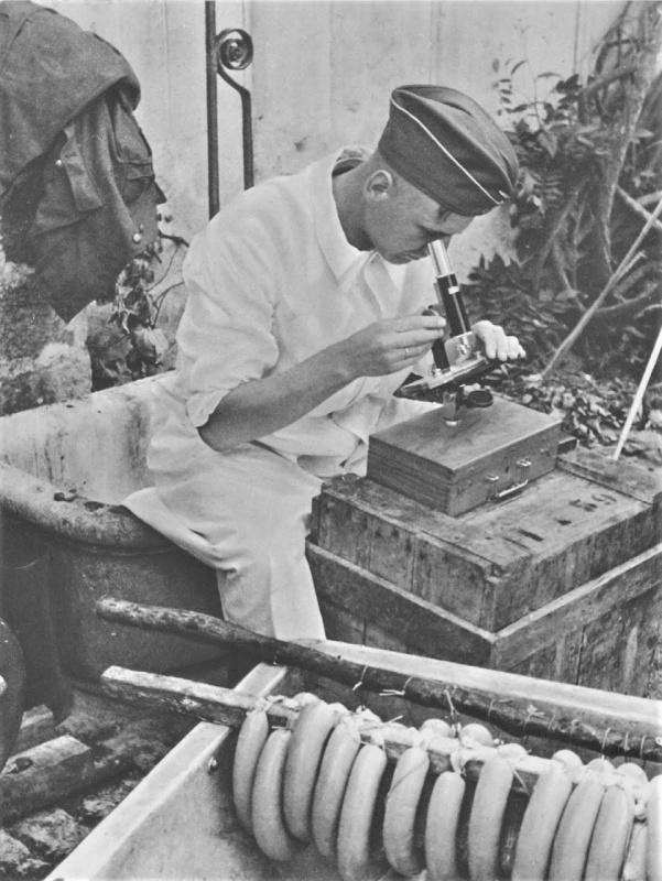 Проверка качества колбасы. 1943 г.