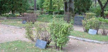 п. Алсунга, край Алсунгас. Памятник на братском захоронении на территории кладбища Калнбирзес по улице Райня, где похоронено 14 советских воинов.
