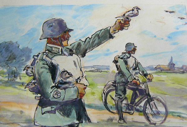 Reich Albert. Учения. Голубиная почта.
