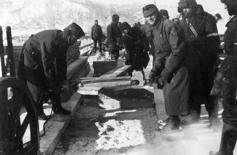 Венгерские солдаты и советские военнопленные восстанавливают взорванный 19 сентября 1941 года при отступлении советскими войсками мост имени Евгении Бош. 1942 г.