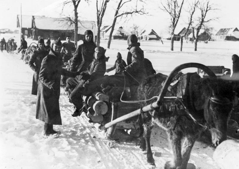 «Добыча» дров. 1941 г.