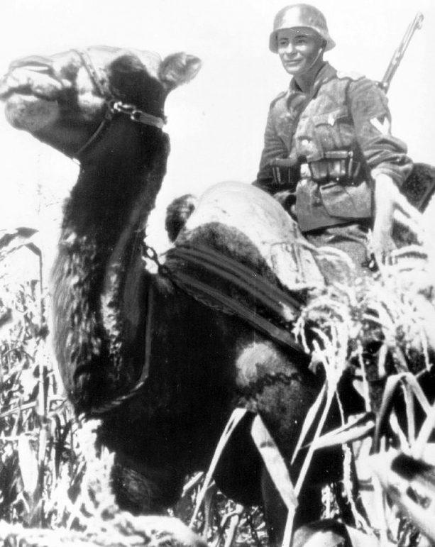 Егерь на Кубани. 1942 г.