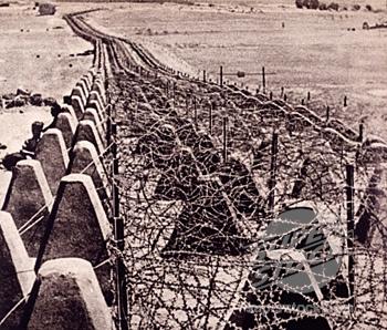 «Зубы дракона» с колючей проволокой. 1940 г.