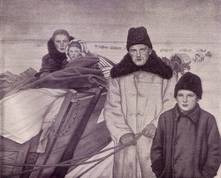 Hoyer Hermann Otto. Большой путь. Возвращение в немецкую семью крестьян Галиции и Волыни.